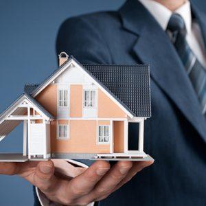 Wills & Deceased Estates